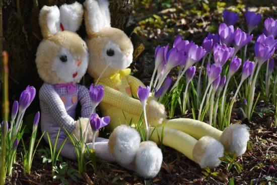 Is the Easter Bunny a boy or a girl?